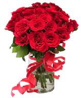 21 adet vazo içerisinde kırmızı gül  Muş çiçek satışı