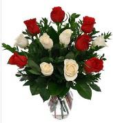 Vazo içerisinde 6 kırmızı 6 beyaz gül  Muş hediye çiçek yolla
