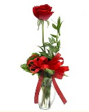 vazo içerisinde 1 adet kırmızı gül  Muş çiçekçi telefonları