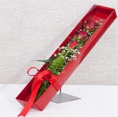 Kutu içerisinde 3 adet kırmızı gül  Muş online çiçek gönderme sipariş