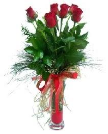vazo içerisinde 5 kırmızı gül  Muş güvenli kaliteli hızlı çiçek