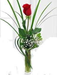 Cam içerisinde 1 kırmızı gül  Muş çiçek gönderme sitemiz güvenlidir