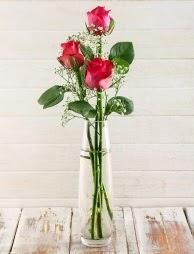 Cam içerisinde 3 kırmızı gül  Muş çiçek satışı