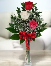 Camda 2 kırmızı 1 beyaz gül  Muş ucuz çiçek gönder