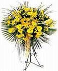 Muş yurtiçi ve yurtdışı çiçek siparişi  Sari kazablanka Ferforje