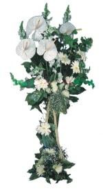 Muş çiçek mağazası , çiçekçi adresleri  antoryumlarin büyüsü özel
