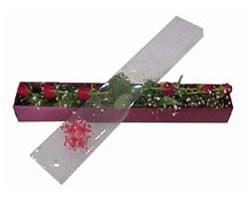 Muş anneler günü çiçek yolla   6 adet kirmizi gül kutu içinde