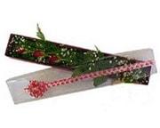 Muş hediye çiçek yolla  3 adet gül.kutu yaldizlidir.