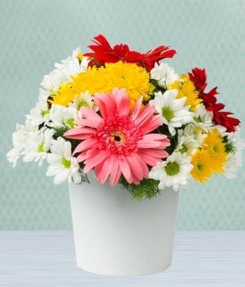 Seramik Vazoda Gelbera ve Papatya  Muş çiçek gönderme