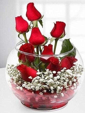 Kırmızı Mutluluk fanusta 9 kırmızı gül  Muş çiçek siparişi sitesi