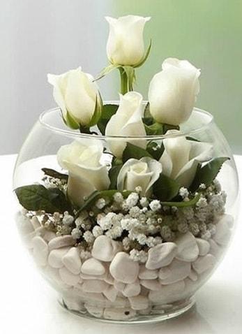 Beyaz Mutluluk 9 beyaz gül fanusta  Muş çiçek siparişi sitesi