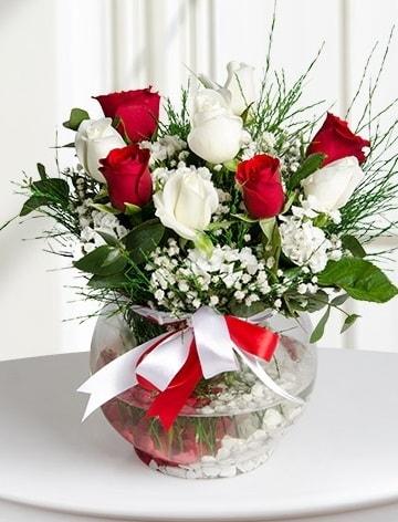 Aşk Küresi  5 beyaz 5 kırmızı gül fanusta  Muş internetten çiçek satışı