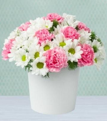 Seramik vazoda papatya ve kır çiçekleri  Muş çiçek siparişi sitesi