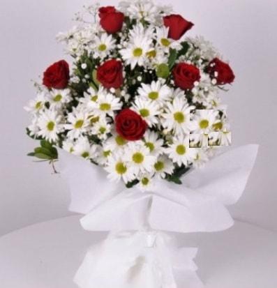 7 adet kırmızı gül ve papatyalar krizantem  Muş internetten çiçek satışı