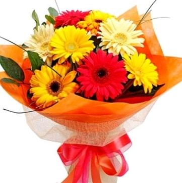 9 adet karışık gerbera buketi  Muş çiçek , çiçekçi , çiçekçilik