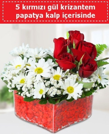 mika kalp içerisinde 5 kırmızı gül papatya  Muş çiçek gönderme