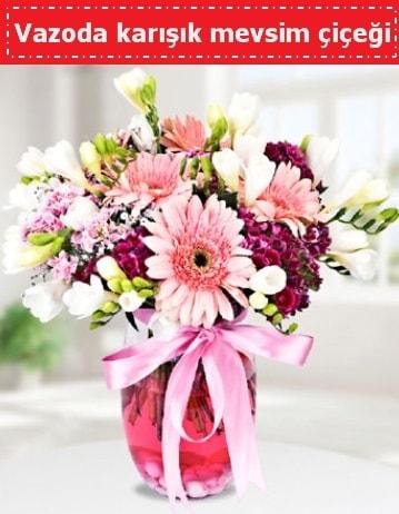 Vazoda karışık mevsim çiçeği  Muş çiçek , çiçekçi , çiçekçilik