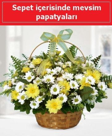 Sepet içerisinde mevsim papatyaları  Muş ucuz çiçek gönder