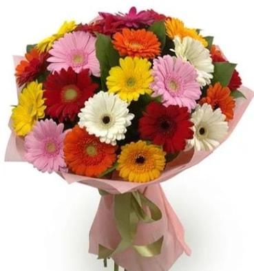 Karışık büyük boy gerbera çiçek buketi  Muş çiçek satışı